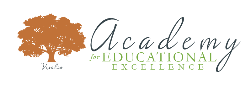 Academy-Logo-big-wide